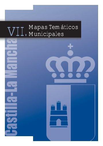 7. Mapas Temáticos Municipales