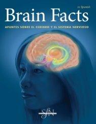 Brain Facts - Universidad Veracruzana
