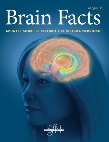Brain Facts - Universidad Veracruzana