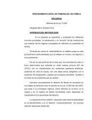 procedimiento ante los tribunales de familia - Colegio de Abogados ...
