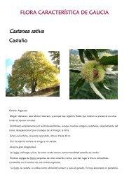 Flora - Xunta de Galicia