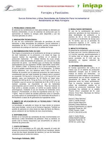 SURCOS ESTRECHOS Y ALTAS DENSIDADES DE POBLACIÓN ...