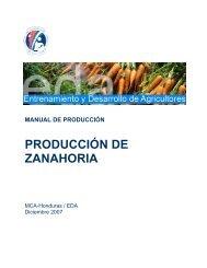 PRODUCCIÓN DE ZANAHORIA - Cuenta del Milenio - Honduras