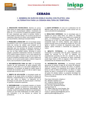 SIEMBRA EN SURCOS DOBLE HILERA CON PILETEO ... - UTEP