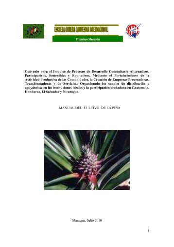 manual del cultivo de la piña - Escuela Obrera Campesina ...