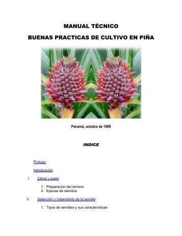 manual técnico buenas practicas de cultivo en piña - oirsa