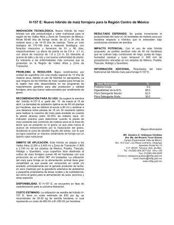 H-157 E: Nuevo híbrido de maíz forrajero para la Región ... - UTEP