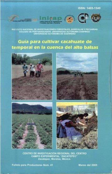 Guía para cultivar cacahuate de temporal en la cuenca del alto balsas