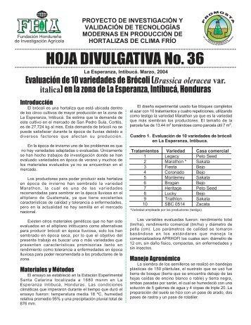 HOJA DIVULGATIVA No. 36 - FHIA