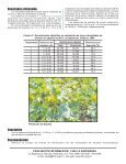 HOJA DIVULGATIVA No. 22 - FHIA - Page 2