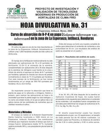 HOJA DIVULGATIVA No. 31 - FHIA