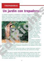 Un jardín con trepadoras