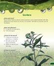 Insecticidas y Abonos Orgánicos - Ipade - Page 7