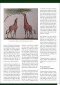 Descargar - La Cruzada del Saber - Page 5