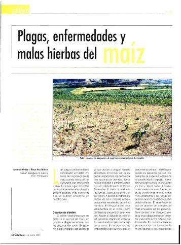 Malvar - Plagas, enfermedades y malas hierbas del maíz .pdf