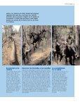 249 Kb - Revista Consumer - Page 2