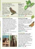Woodland - Page 3