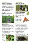 Woodland - Page 4