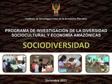 Aporte del programa al Plan Estratégico IIAP - Instituto de ...