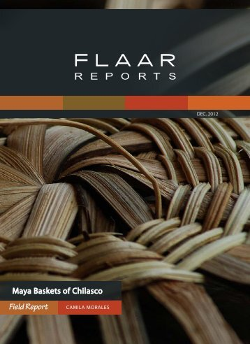 Field Report - Maya Archaeology