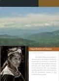 Field Report - Maya Archaeology - Page 6