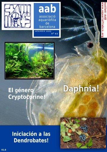 En este artículo repasaremos algunos tipos de invertebrados ...