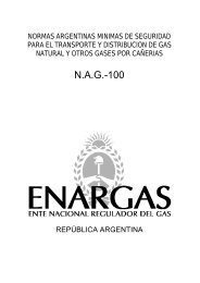 NAG 100 - Ente Nacional Regulador del Gas