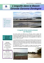 Lettre d'information n°7 - Migado