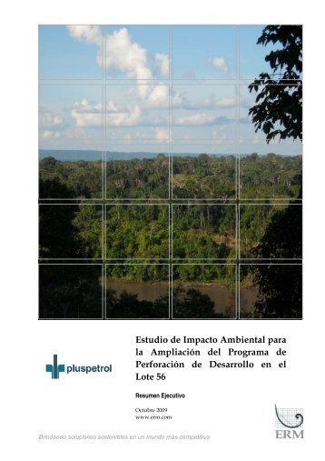 Resumen Ejecutivo - Ministerio de Energía y Minas