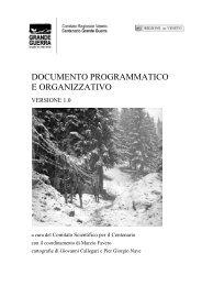 Documento programmatico e organizzativo - Regione Veneto