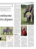 Suplemento - El Financiero - Page 7