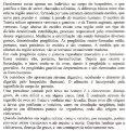 Porífera e um filo (filo são os agrupamentos mais elevados em cada ... - Page 7
