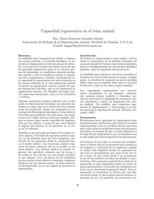 Spirostomum Y Sus Partes