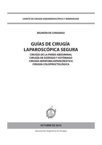 GUÍAS DE CIRUGÍA LAPAROSCÓPICA SEGURA - Asociación ...