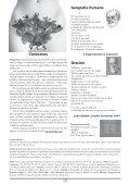 Revista n.º 8 - Artes Libres - Page 3