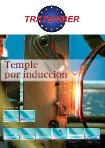 Temple por inducción Temple por inducción - Grupo Trateriber