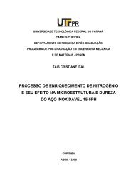 ITAL, Tais Cristiane.pdf - PPGEM - UTFPR