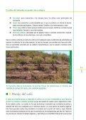 El cultivo del almendro en producción ecológica - Page 5