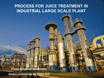 process for juice treatment in industrial large scale plant - Fapesp