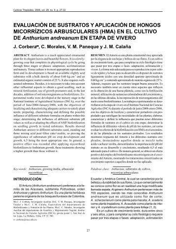 Evaluación de sustratos y aplicación de hongos micorrizicos