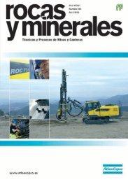 Rocas y Minerales 460 - Fueyo editores