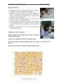 OBSERVACIÓN DE UN FROTIS DE SANGRE - IES Izpisúa Belmonte - Page 2