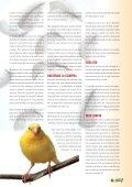 Mascotas Club Mascotas Club - Dibaq - Page 7