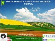 remote sensing & agricultural statistics in brazil - agrisat