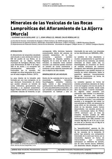 Minerales de las Vesículas de las Rocas Lamproíticas del ...