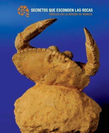 Guía Didáctica - Secretos que esconden las rocas - Murciaturistica