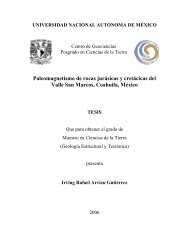 Paleomagnetismo de rocas jurásicas y cretácicas del Valle San ...