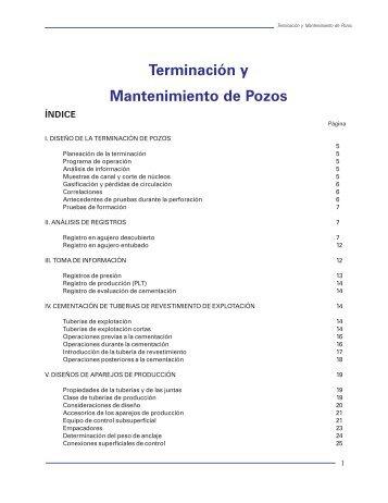 Terminación y Mantenimiento de Pozos - OilProduction.net
