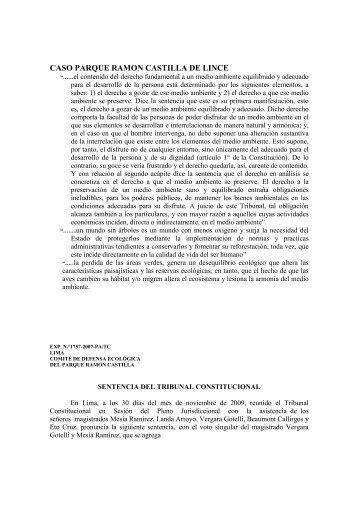 CASO PARQUE RAMON CASTILLA DE LINCE - ipdapc