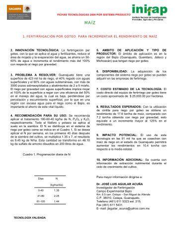 FERTIRRIGACIÓN POR GOTEOPARA INCREMENTAR EL ... - UTEP